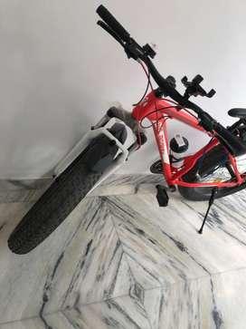 Aluminium fat tyre bike for sale