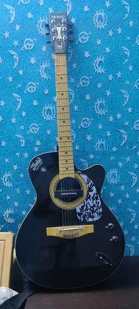 Tronad guitar