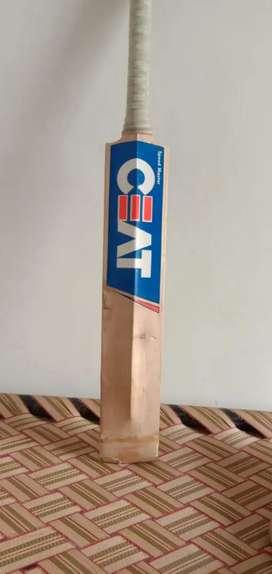 Used cricket bat