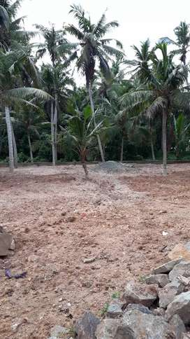 13 cent plot for sale can be Divided Vellayani ookodu road.