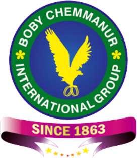 CHEMMANNUR INTERNATIONAL GROUP