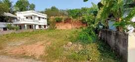 12 Cent Original Land pookkattupady Kizhakkambalam 20 -20 Panjayath