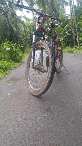 Viva cycle 1year used
