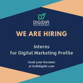 Digital Marketing Internship in Noida
