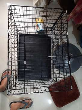 New Condition  Dog Crate, cage, house 24 inch