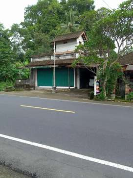 BUC,Tanah 9are bns Bangunan di Mengwi Bringkit arah BATURITI BEDUGUL