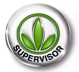 Helper, security guard, drivers, storekeeper, supervisor jobs