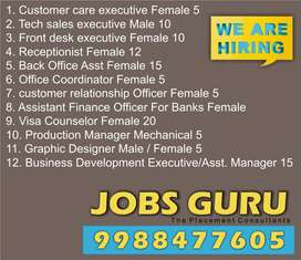 Area sales Manager Garments (Haryana , Himachal)