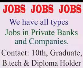 Shree Ram job's solutions