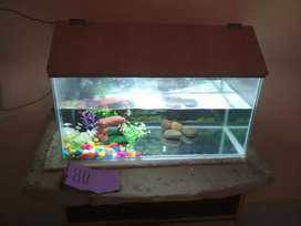 FISH TANK FOR SELL