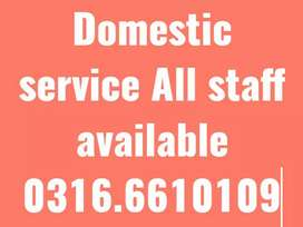 Patient attendance cook maid etc Domestic staff available