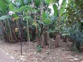 Tanah disewakan Cocok untuk Workshop/Gudang