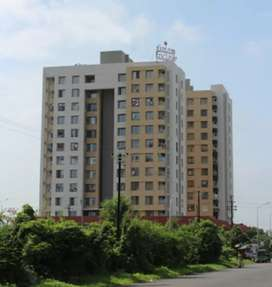 LUXURIOUS  2BHK FLAT FOR SALE  IN PAL.
