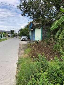 Tanah SHM Majenang Kuripan purwodadi