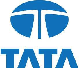Hiring experience & fresher candidate for tata motor office work for m