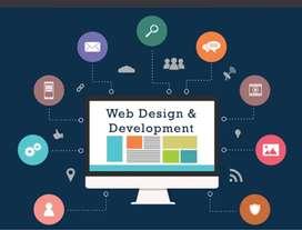 Direct hiring for web developer.