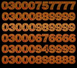 NEED FAVOURITE GOLDEN NUMBER?