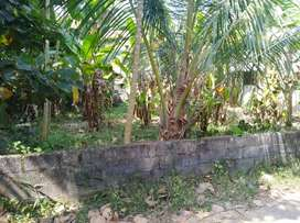 House plot for sale 6 cents, solid land, lorry access, fully developed