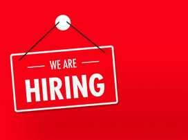 2019 male and female job vacancy