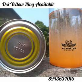 Osi yellow Ring artemia  available