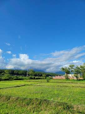 Plot for sale at defence colony tilwari new mussorie bypass