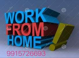 Graduates needs a job from home  Jobs