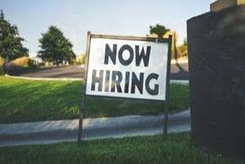 •Requirement candidates for online part time Work