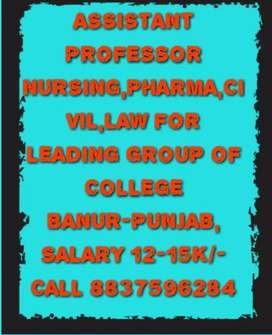Hiring assistant professor Nursing,Pharma, Management,IT,Law, Civil