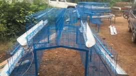 Chicken layer cage for sale