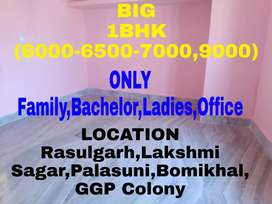 1BHK(6000 To 9000) House Available Near Palasuni To Lakshmi Sagar