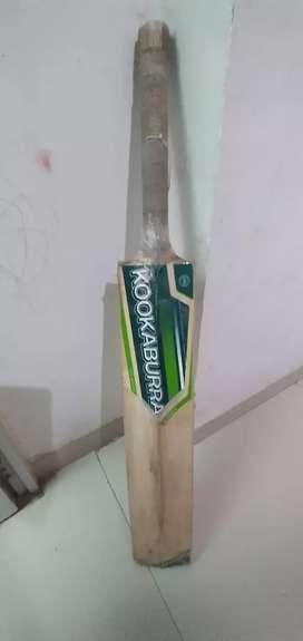 Cricket bat (Kookaburra)KAHUNA