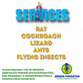 German Fumigation Services / special discount offer Gulistan e johar
