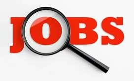 Wanted Experience SEO Developer Immediately In Bowenpally