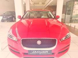 XE. Jaguar