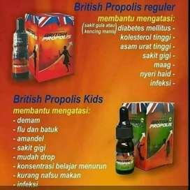 British Propolis Distributor