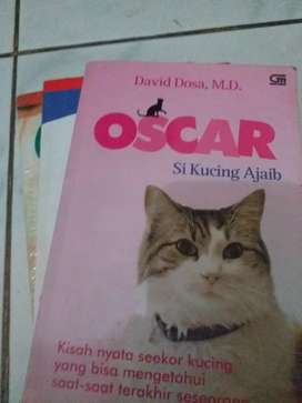 Edisi Kucing satu set
