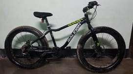 Raleigh Fat Bike (Big Sam)