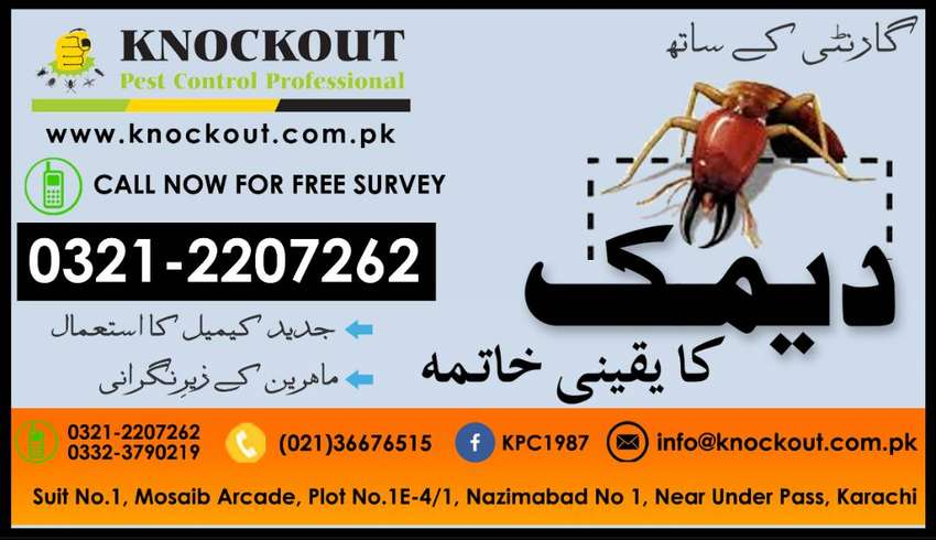 Termite (Deemak) Control/Proofing/Fumigation - Knockout Pest Control 0