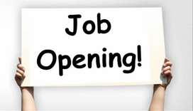 Looking for Sales business executive