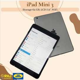 Ipad mini 3 wifi only