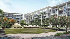 Ready to Move 3 BHK Luxurious Apartment at Sinhagad road