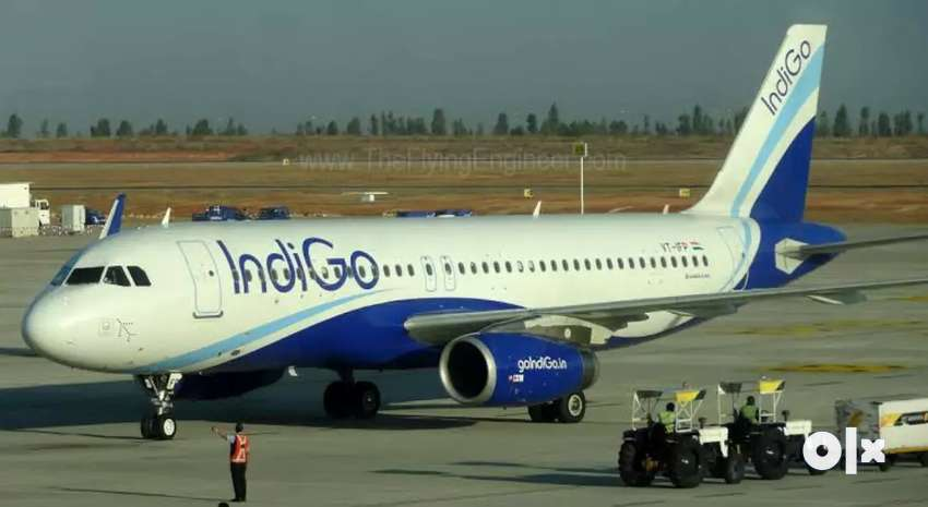Ground Staff Job vacancy in INDIGO Airlines Job fresher / Experien 0