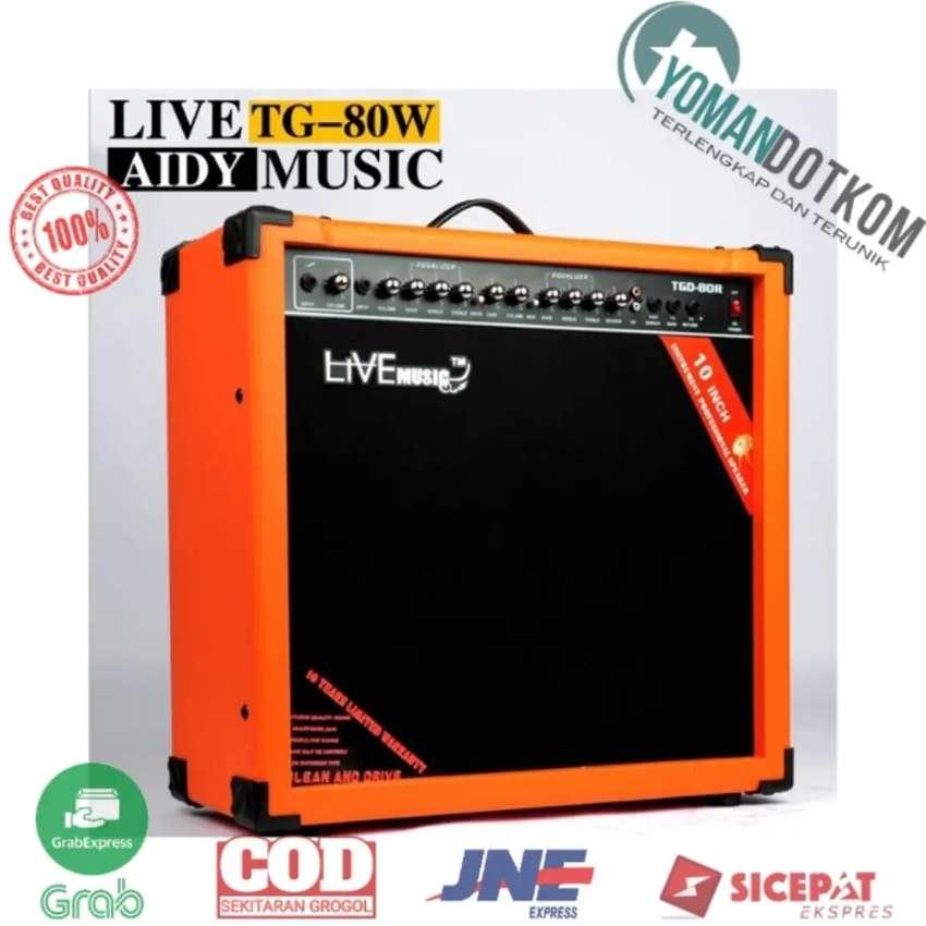 TG-80W Live Music Electric Guitar Amplifier Reverberation 2 Port 80W