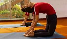 Yoga & wellness teacher