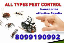We do type pest services