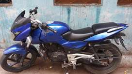 Metalick Blue color pulsar 180