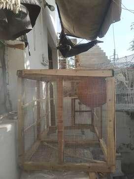 Breeding Cage & box For Any Birds