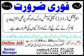 Online and office base work for Lahore students