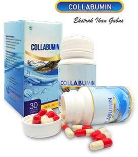 Ekstrak Ikan Gabus - Collabumin