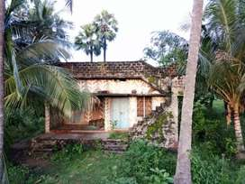 Individual farm House For Sale